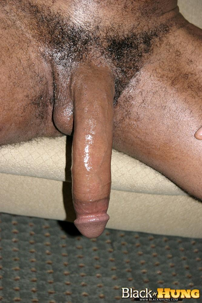 Big hairy black dicks