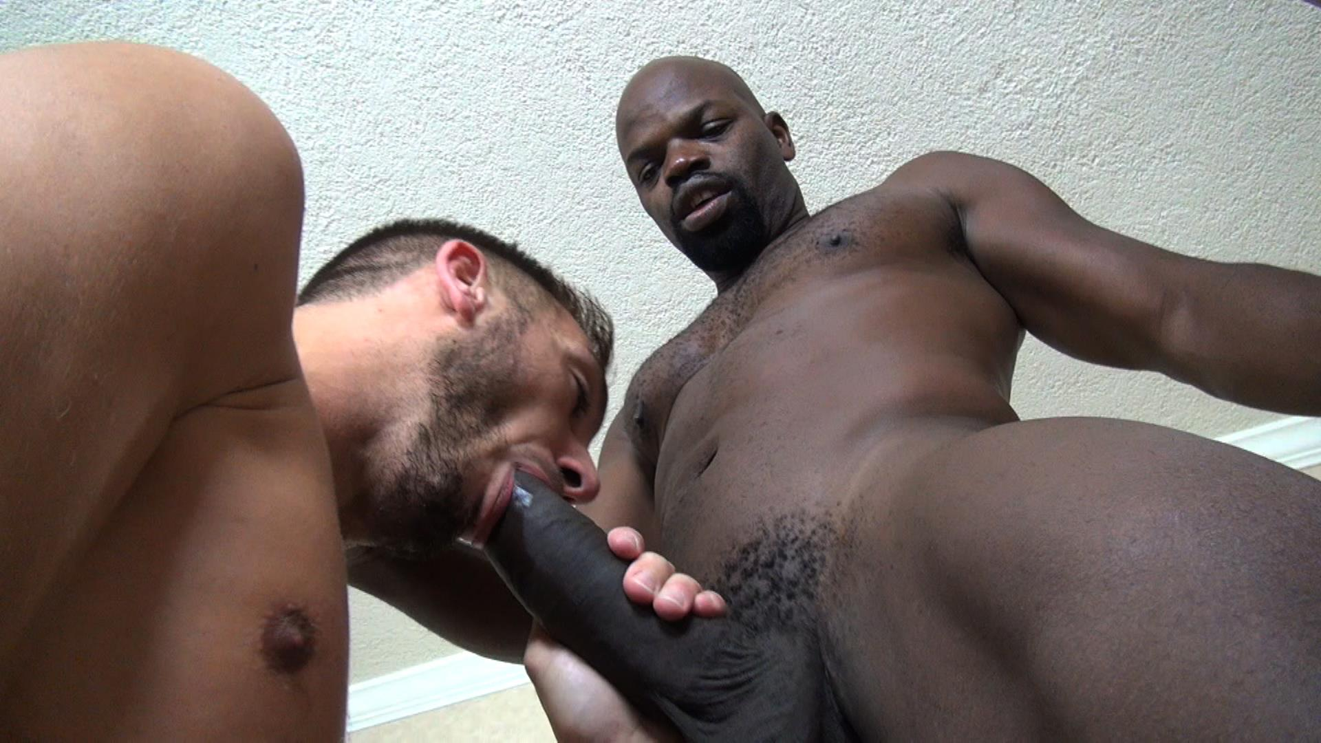 Gay black tube videos