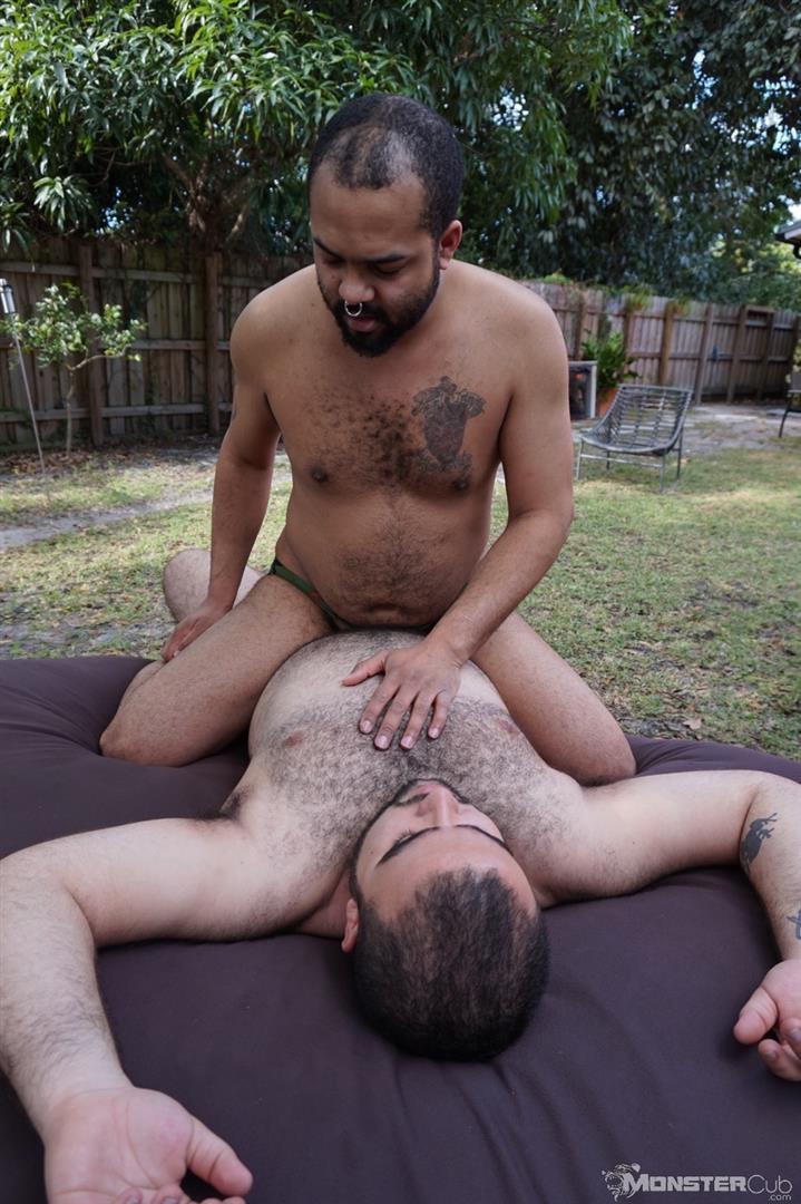 from Carlos gay bear cub sex